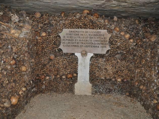les catacombes     denfert rochereau paris