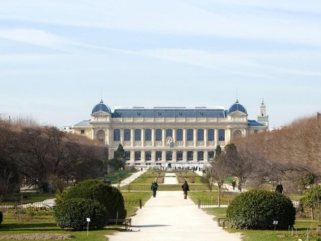 Wander through Jardin des Plantes