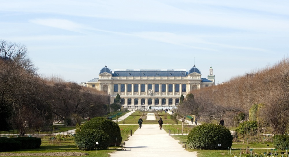 Wander through the Jardin des Plantes