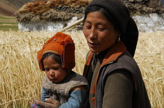 Himalaya, terre des femmes