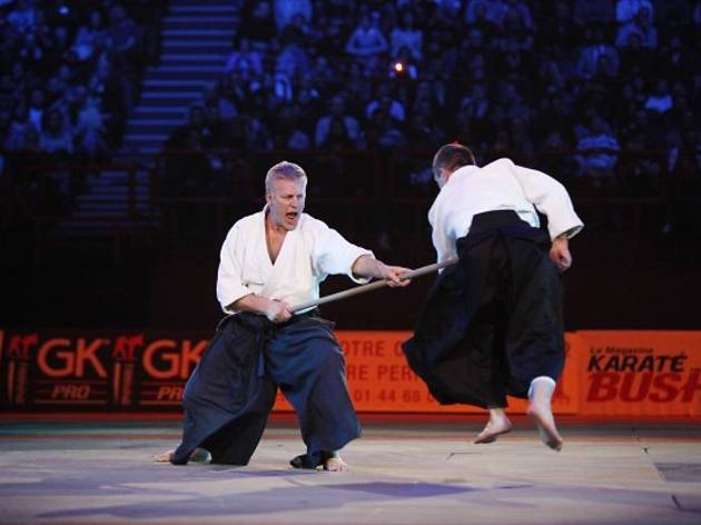27e Festival des arts martiaux