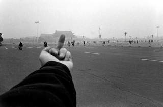 Ai Weiwei, 'Entrelacs'