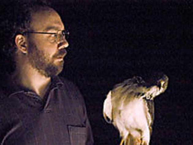 FOR THE BIRDS Giamatti cries fowl.