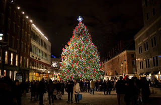 South Street Seaport Tree Lighting