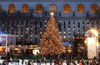 Citi Pond at Bryant Park Tree