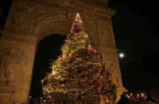 Washington Square Park Tree Lighting