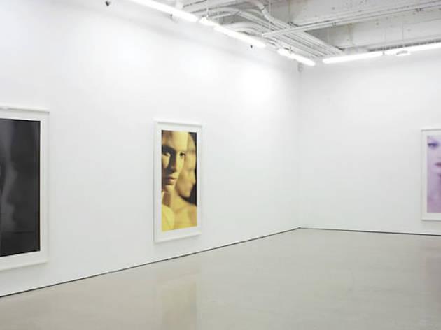 D'Amelio Gallery