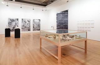 James Cohan Gallery