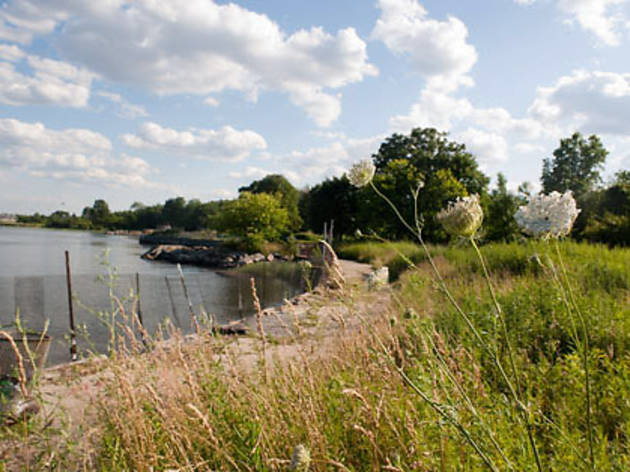 Pelham Bay Park; Photograph by David Rosenweig