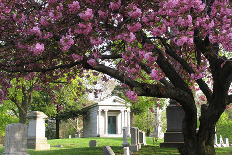 Green-Wood Cemetery; Photograph by Aaron Brashear