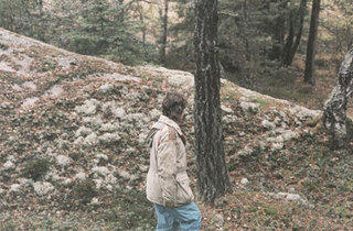 FOREST FOR THE TREES Edstrm takes a leisurely stroll through the woods.