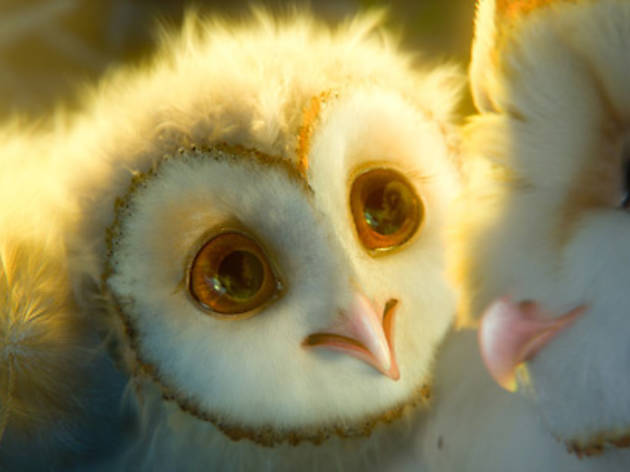 Legend of the Guardians: The Owls of the Ga'Hoole