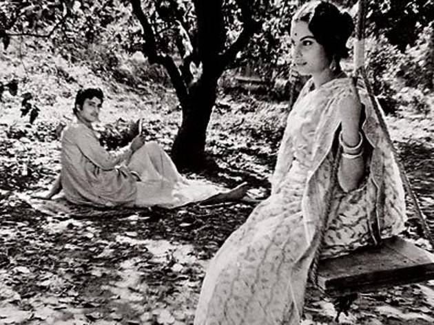 SOMEONE IN A TREE Chatterjee watches as Mukherjee casts her swing vote.