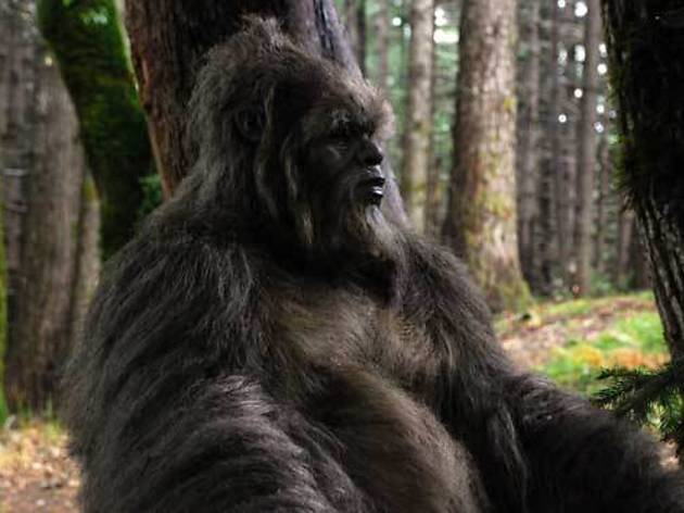 A sasquatch reflects in Letters from the Big Man