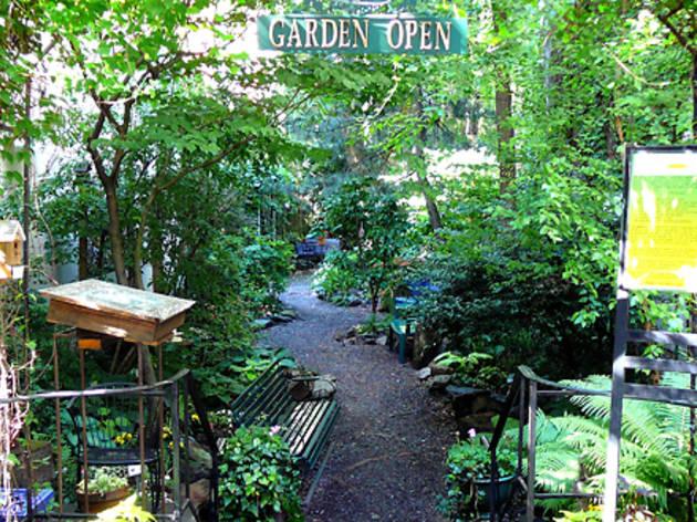 (Photograph: Courtesy Creative Little Garden)