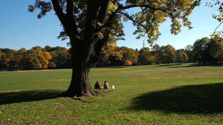 Prospect Park Image