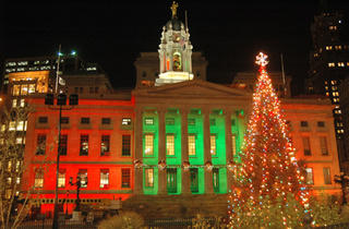 Brooklyn Borough Hall Tree