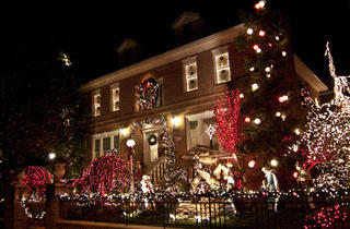Christmas Lights and Cannoli Tour