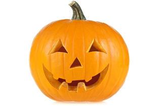 pumpkinmain.jpg