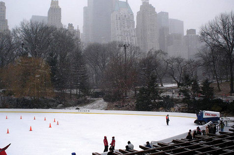 Ice skate or hit the carousel at Wollman Rink
