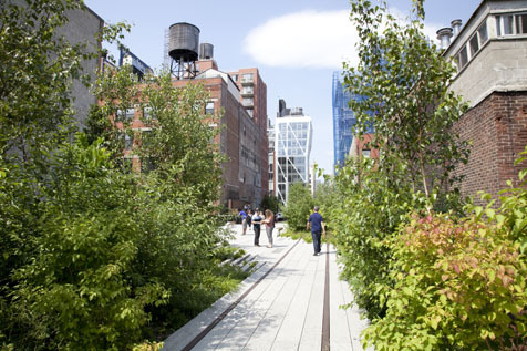 The High Line guide