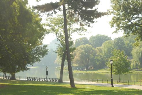 Harlem Meer in Central Park