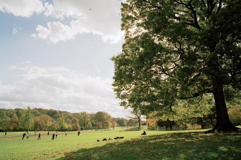 Prospect Park, Long Meadow, autumn