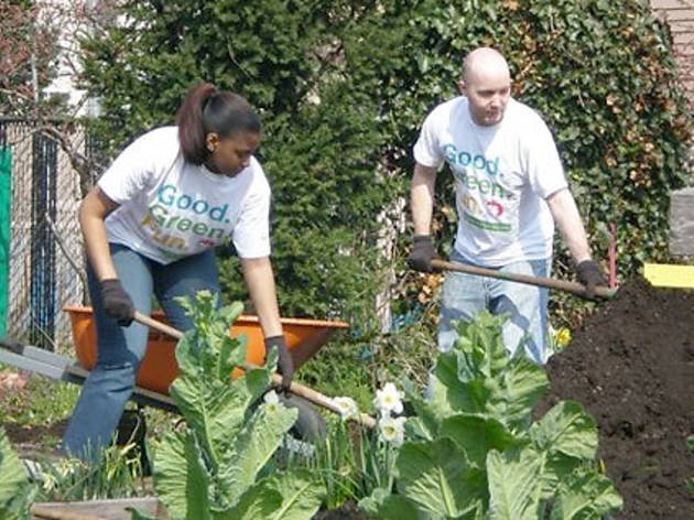 New York Cares Day Spring