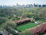 Photograph: Central Park Conservancy