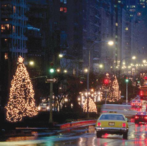 Park Avenue Memorial Trees
