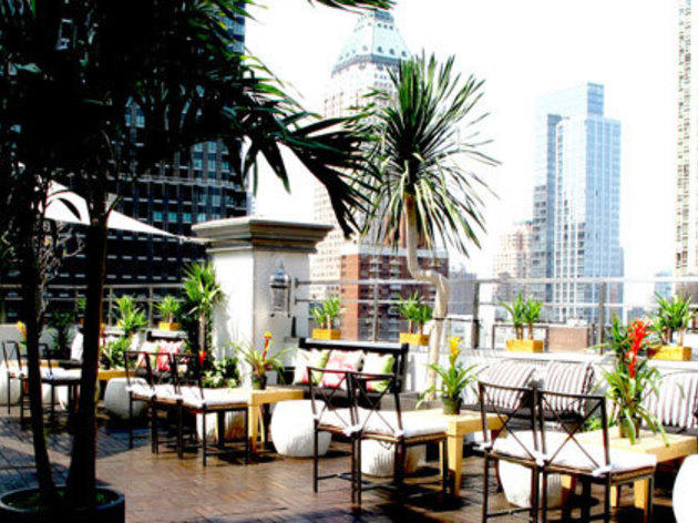 Rooftop bars in NYC