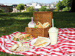 The top picnic spots in NYC