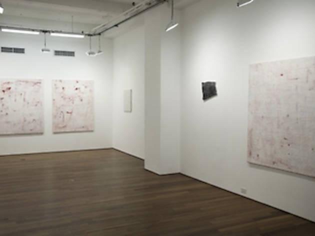 Ana Cristea Gallery
