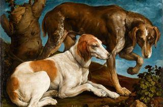 ( Jacopo da Ponte, 'Deux chiens de chasse attachés à une souche', 1548 / © Service presse Réunion des musées nationaux - Grand Palais / Stéphane Maréchalle)