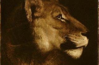 (Théodore Géricault, 'Tête de lionne', ca. 1819 / © Service presse Réunion des musées nationaux - Grand Palais / Christian Jean )