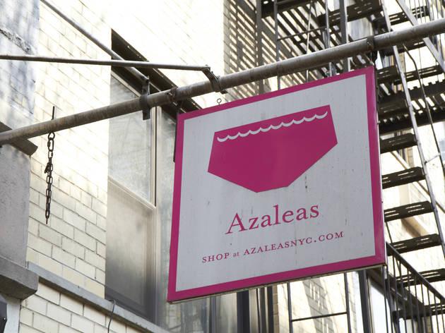 Azaleas (Jena Cumbo Photography, Photograph: Jena Cumbo)