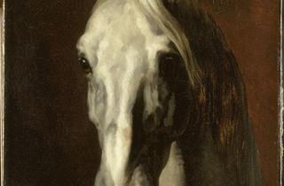 (Théodore Géricault, 'Tête de cheval blanc', avant 1816-1817 / © Service presse Réunion des musées nationaux - Grand Palais / Thierry Le Mage)