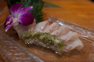 Lure Fishbar (Photograph)