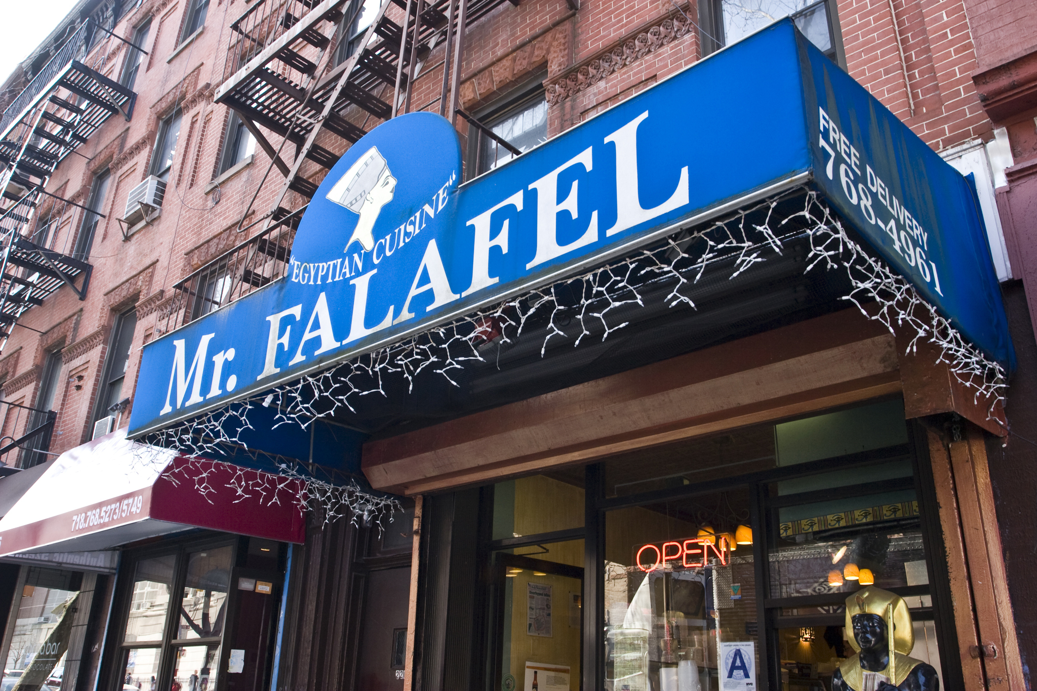 Mr. Falafel