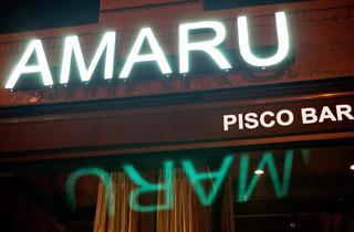 Amaru (© Paul Wagtouicz, Photograph: Paul Wagtouicz)