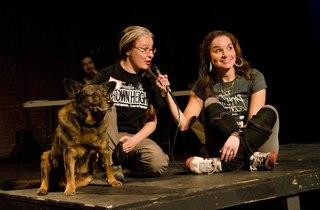 Brooklyn Mutt Show (Time Out, Photograph: Marielle Solan)