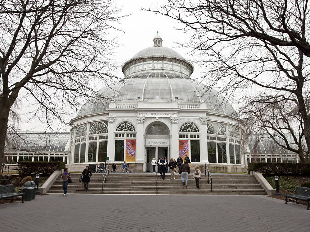 New York Botanical Garden | Bronx, NY