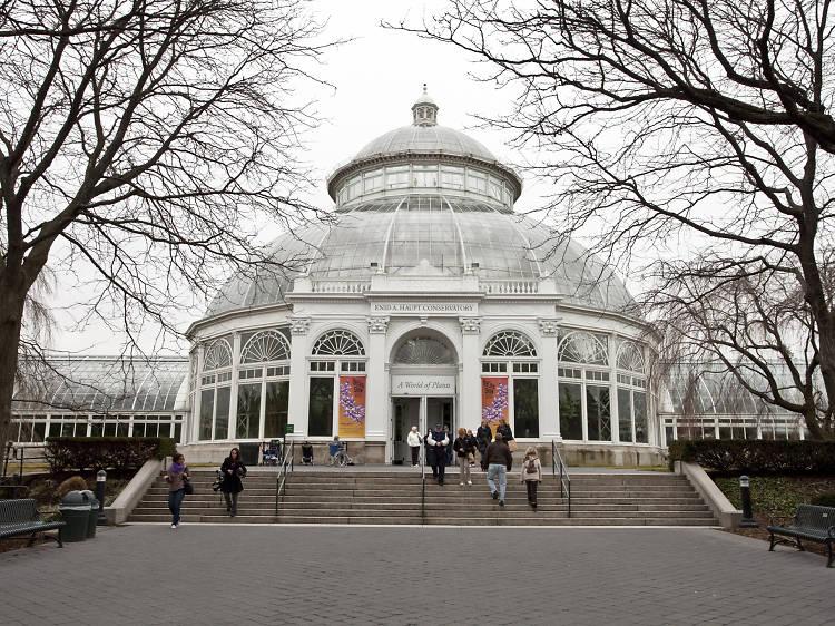 Touristy: New York Botanical Garden