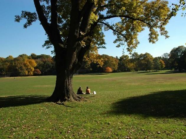 Prospect Park 101: Essential information