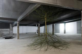 """La """"Sous-Face 37""""... (...vue par Cécile Beau / Installation présentée jusqu'au 4 juin 2012 : Cécile Beau, 'Subfaciem', Sous-Face 37/ © Photo : Aurélien Mole)"""