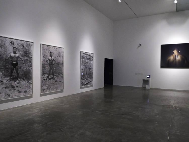 MUAC, Museo Universitario de Arte Contemporáneo