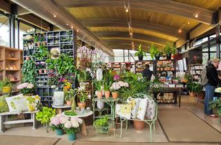Shop in the Garden