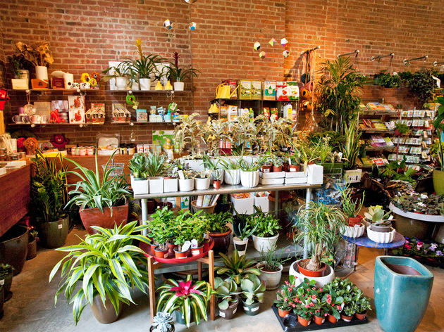 The best flower shops in NYC