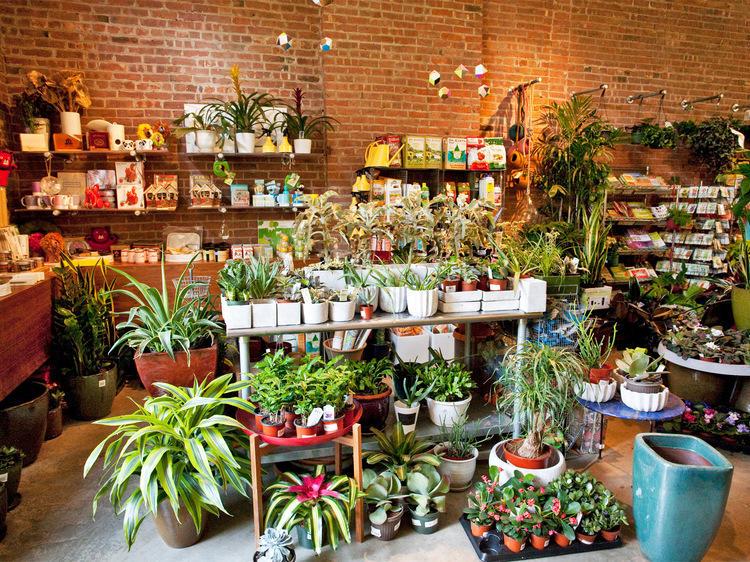 Bond over botanicals