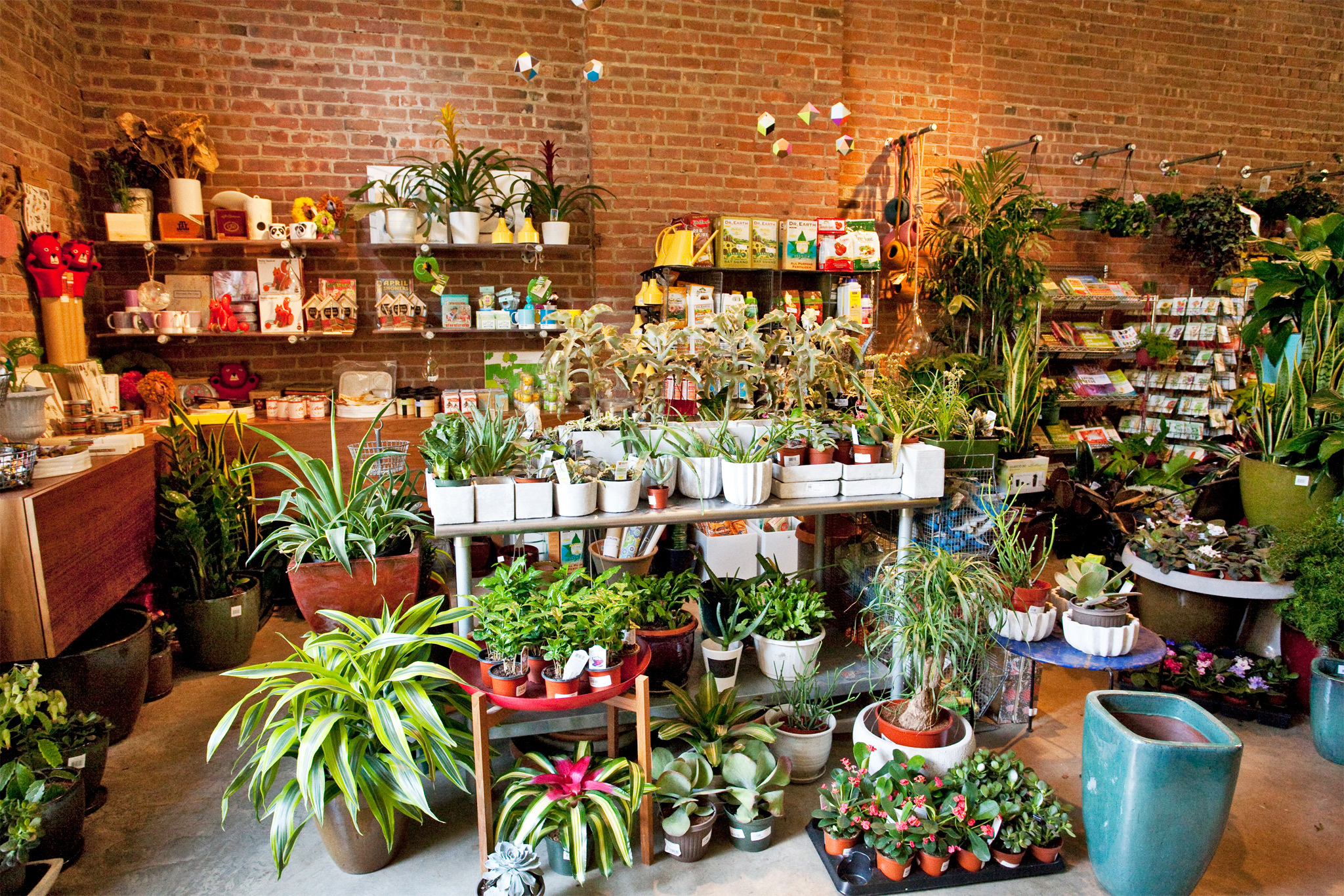 Best Garden Store Options In Nyc For Plants Flowers